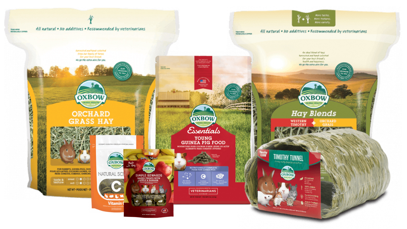 Oxbow guinea pig products (that our guinea pigs love!) | guineapigden.com
