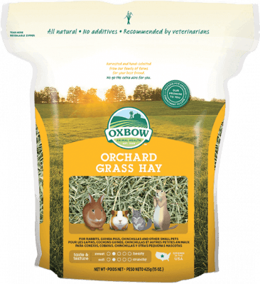 Oxbow guinea pig products: Oxbow Orchard Grass Hay | GuineaPigDen.com